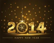 2014-new-years-celebration